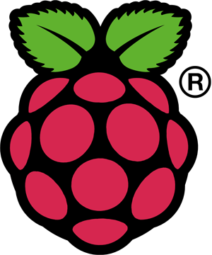 Raspi_Colour_R_300x360.png